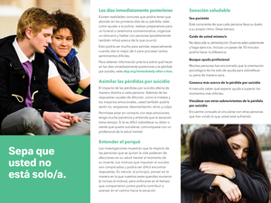 After a Suicide Brochure - Spanish