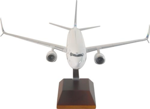 900 Executive Series Alaska 737-900 1/100