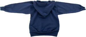 Youth Alaska Logo Pullover Hooded