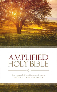 Amplified Hard Cover