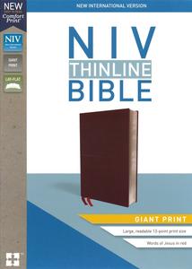 NIV Giant Print Comfort Print