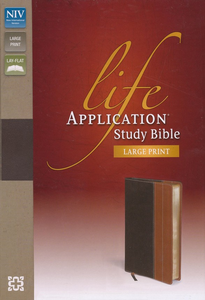 NIV Life App Study Bible Large Print Tan Leather - Bibles - Rock