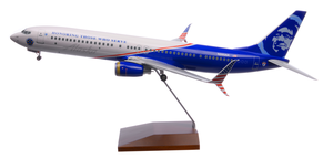 Alaska Airlines Model 1/100 scale Skymarks Supreme 737-900 Honoring Those Who Serve