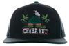 Grassroots Hat (square visor) image 3