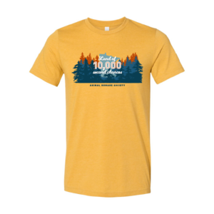 Land of 10,000 Second Chances Tee